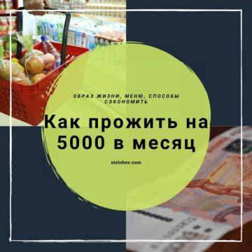 Как прожить на 5000 рублей в месяц: доступное меню и другие способы сэкономить